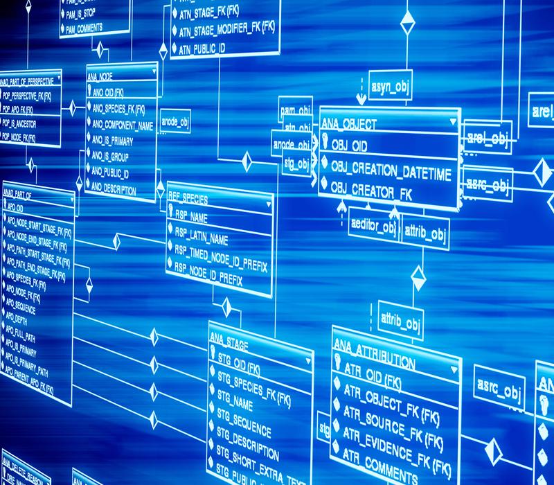Progettazione e implementazione Database